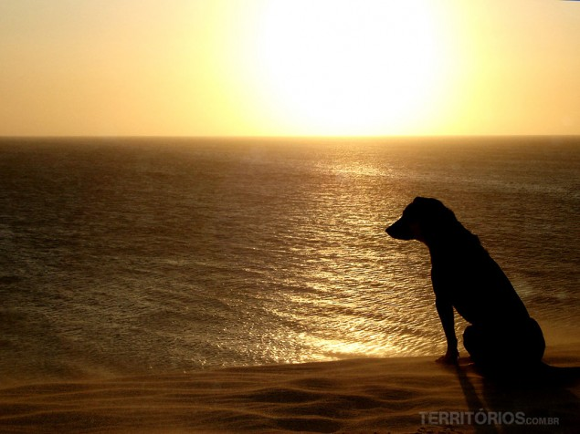 This picture was taken in 2005, on a classic evening in Jericoacoara, Ceará - Brazil