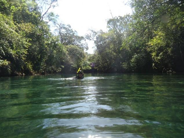 Scuba diving at Recanto Ecológico
