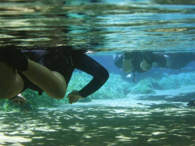 Diving in clear waters in Rio da Prata
