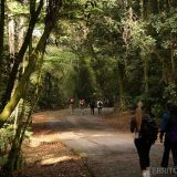 People walking at Cantareira Park